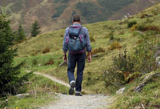 Contato com áreas naturais reduz as chances de desenvolver ansiedade, depressão e estresse Créditos: Pixabay